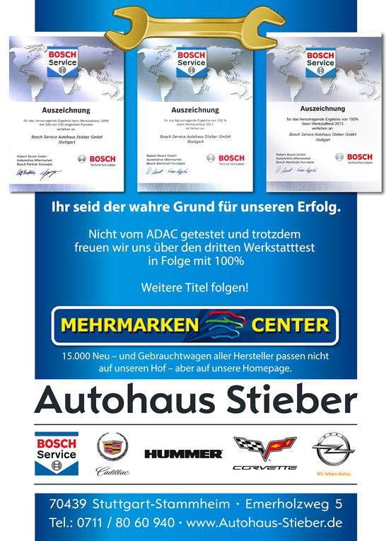 Werkstatttest 2013 - Autohaus Stieber GmbH