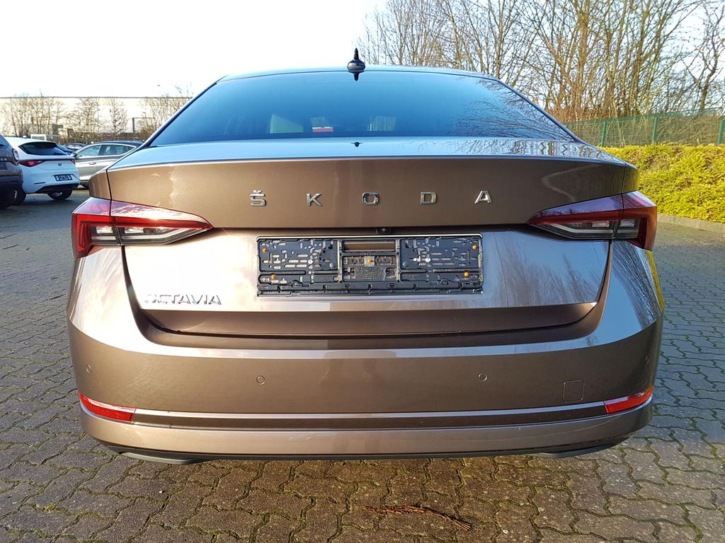 Skoda / Octavia / EU-Neuwagen / Reimport