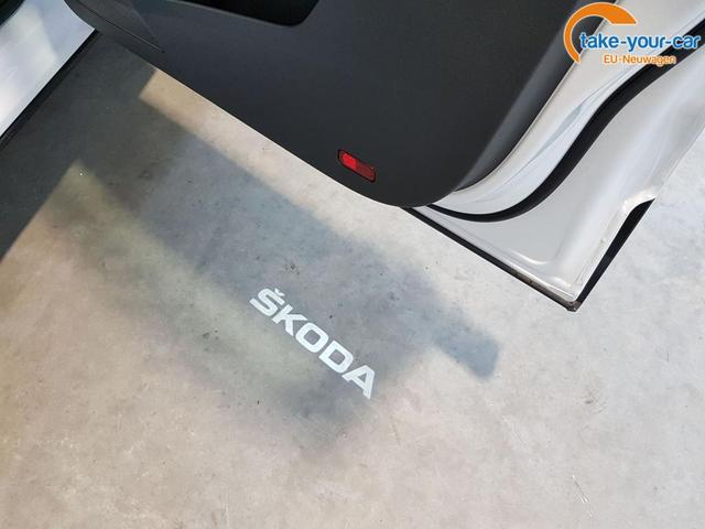 Skoda / Karoq / Weiß /  /  /