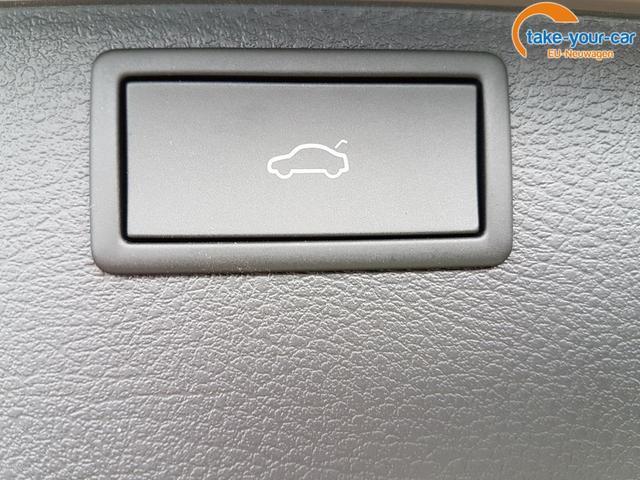 Volkswagen / T6.1 Multivan /  /  /  /