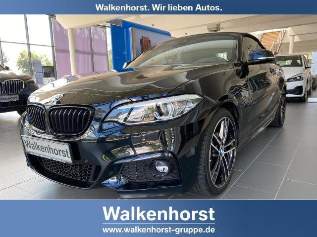 BMW 2er - 220 i M Sport Cabrio EU6d-T Leder LED Navi Kurvenlicht Rückfahrkam. Fernlichtass. Sportsitze