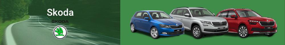 Skoda Reimport EU-Neuwagen in Hohenfurch kaufen