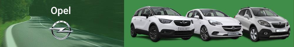 Opel Reimport EU-Neuwagen in Hohenfurch kaufen