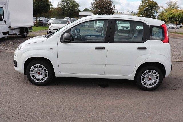 Fiat Panda - Easy 1.2 51kw E6D-TEMP SS KLIMAANLAGE DAB