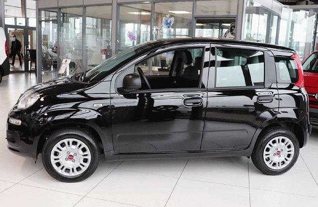 Fiat Panda - Easy 1.2 51kw E6D- TEMP #Radio + Bluetooth