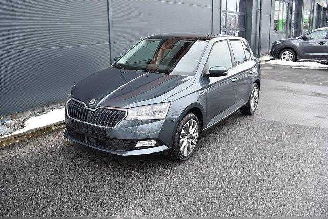 Skoda Fabia - 1.0 TSI CLEVER BEST OF LED*NAVI*PDC*SHZG