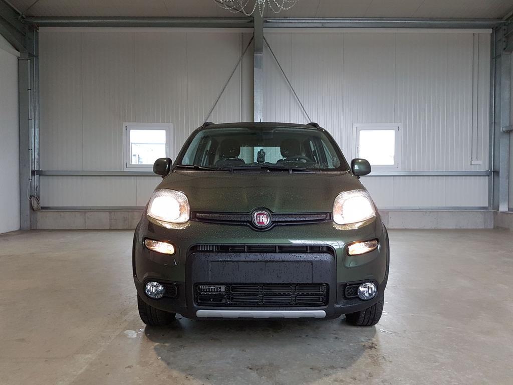 Fiat / Panda / Grün /  /  /