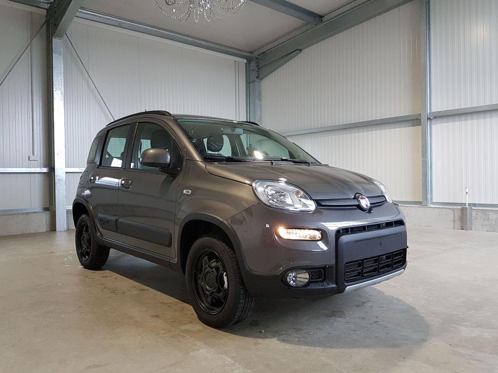 Fiat / Panda / Grau /  /  /