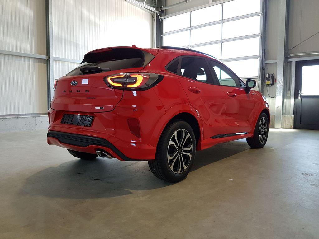Ford / Puma / Rot /  /  /