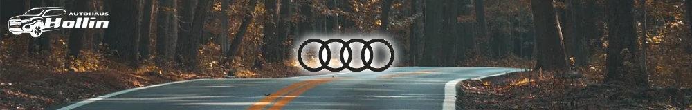 Audi Reimport EU-Neuwagen in Saalbach kaufen