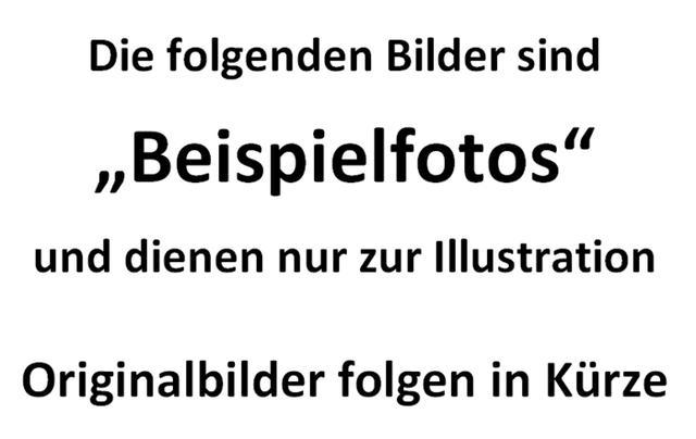 Dokker - Comfort SCe 100, 2 Schiebetüren, Einparkhilfe, Tempomat, Ersatzrad...