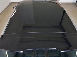 Skoda / Fabia / Grau / WLTP 1.0 TSI 70kW / 95PS /  /