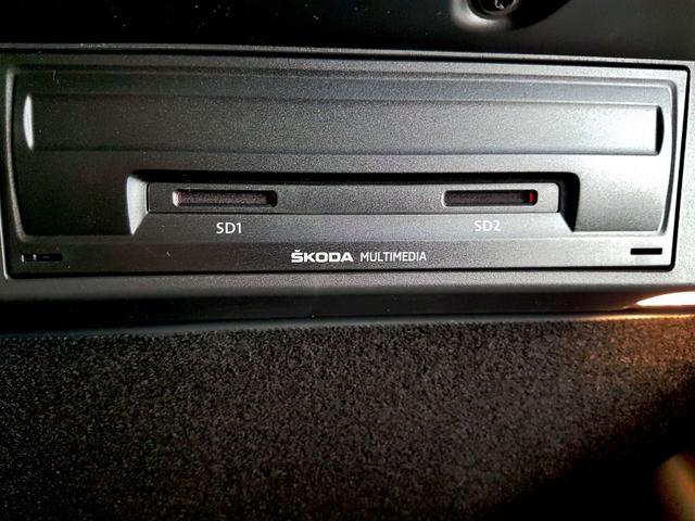 Skoda / Karoq / Grau /  /  / WLTP 2.0 TSI DSG 4x4 140kW / 190PS