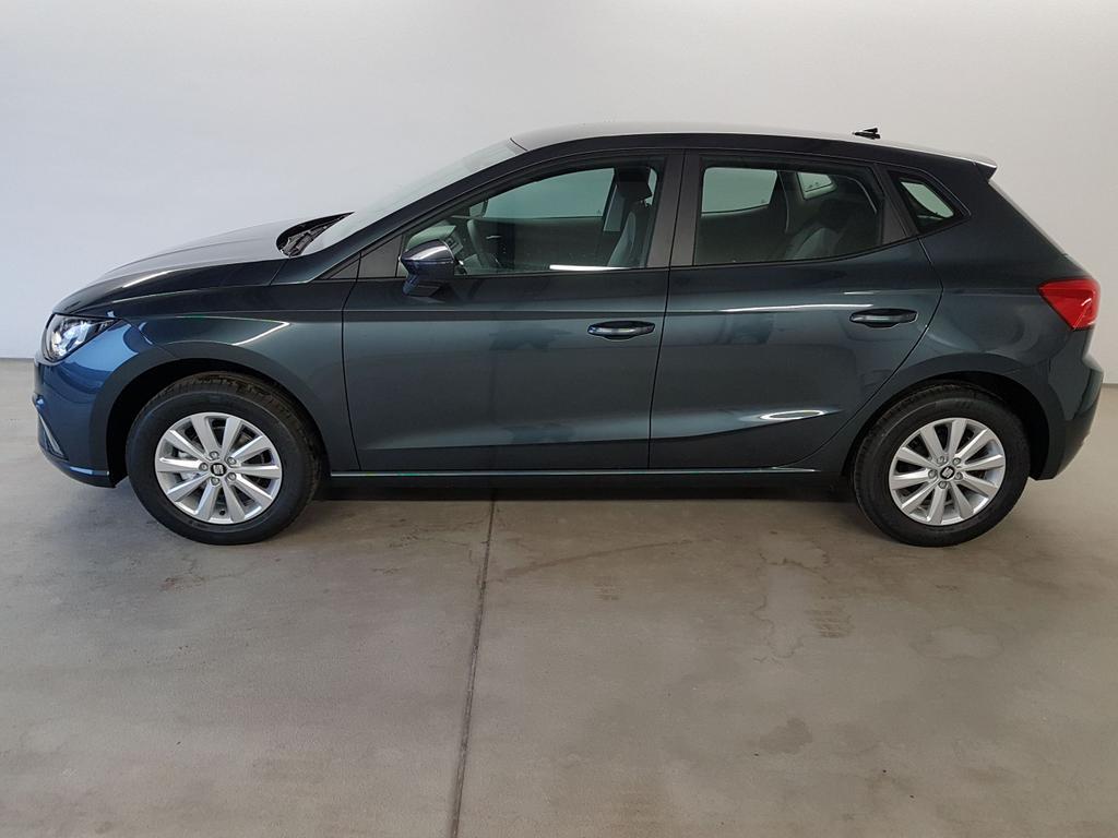 Seat / Ibiza / Grau /  /  / WLTP 1.0 TSI 81kW / 110PS