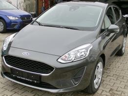 Ford Fiesta 5trg 2018 - Trend SYNC Winter ParkPilot