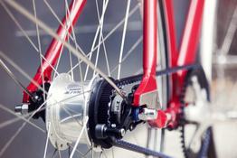 Schindelhauer Lotte - Urban Bike - Damenrad mit 8-Gang-Nabenschaltung, Beispielbilder, ggf. teilweise mit Sonderausstattung