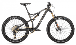 Rotwild Mountainbike - All Mountain R.X2 FS      TRAIL LIMITED (2018)