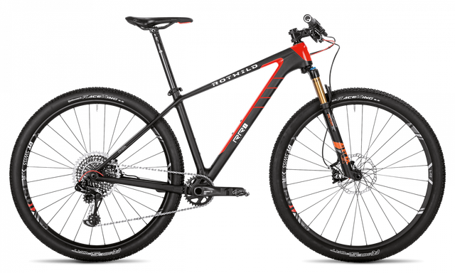 Rotwild Mountainbike - Race R.R2 HT 29 - ULTRA (2019)