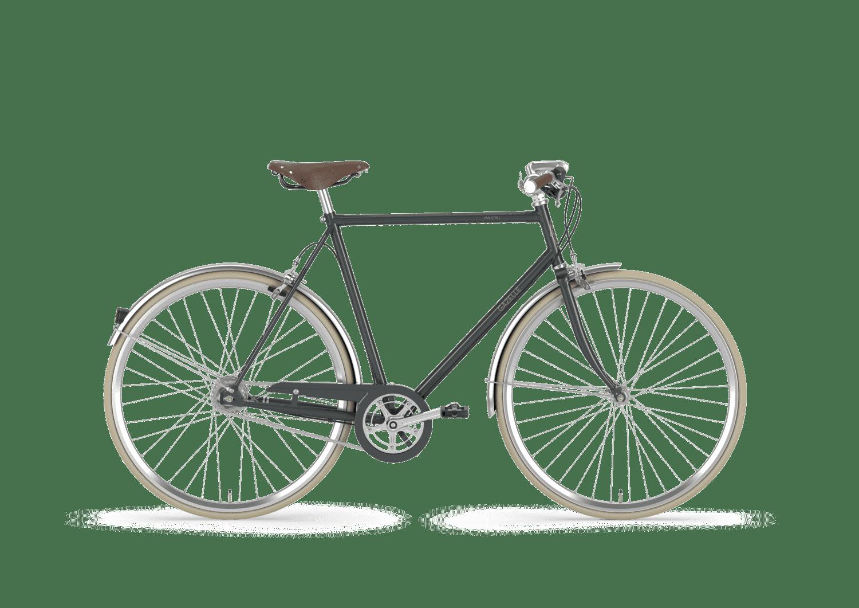 Gazelle van Stael 2019 Herrenrad in Farbe