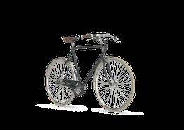 Gazelle van Stael Herrenrad mit leichtem Stahlrahmen 2019, Beispielbilder, ggf. teilweise mit Sonderausstattung