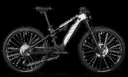 Rotwild E-Mountainbike - Cross Mountain R.C750      CORE (2020) leider ausverkauft!