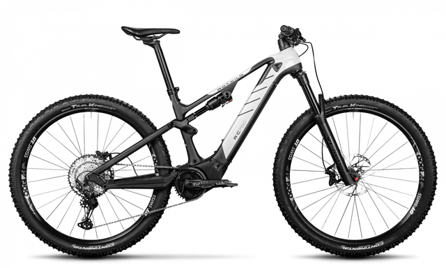 Rotwild E-Mountainbike - Cross Mountain R.C750 - CORE (2020)