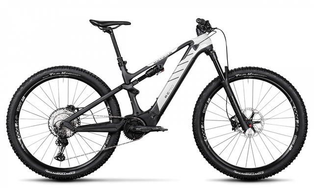Rotwild E-Mountainbike - Cross Mountain R.C750 - PRO (2020)