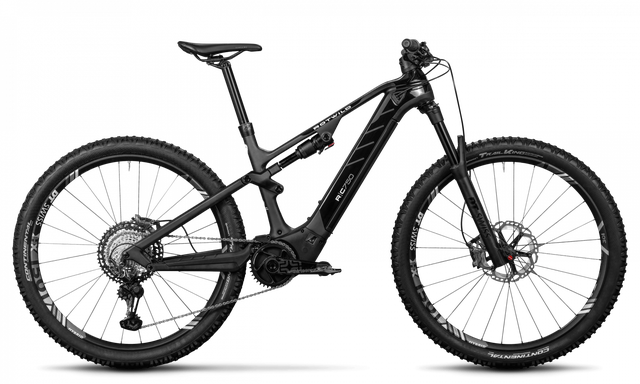 Rotwild E-Mountainbike - Cross Mountain R.C750 - ULTRA (2020) leider ausverkauft!