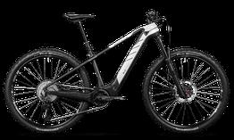 Rotwild E-Mountainbike - Cross Mountain R.C750      PRO HT (2021) // leider ausverkauft!