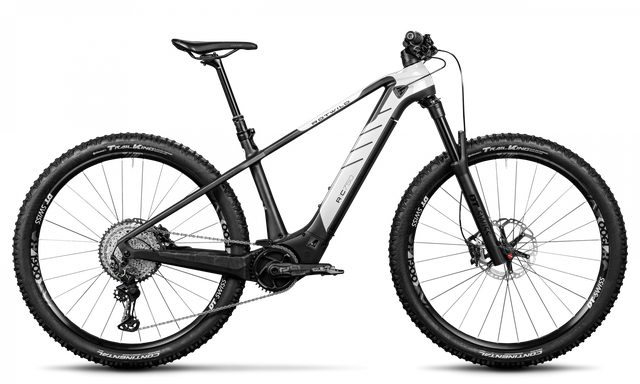 Rotwild E-Mountainbike - Cross Mountain R.C750 - PRO HT (2020)