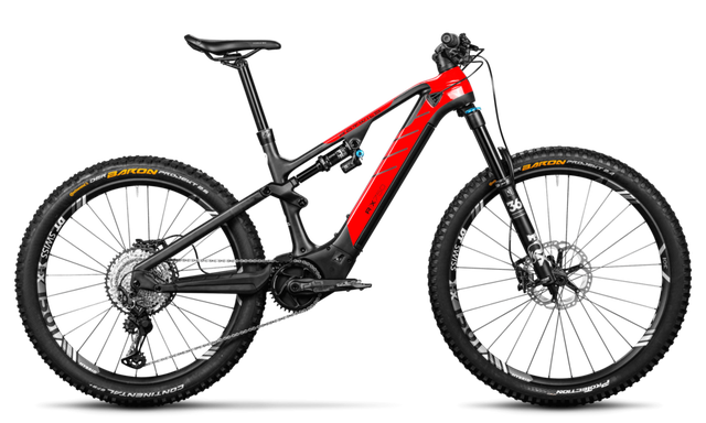 Rotwild E-Mountainbike - Big Mountain R.X750 - PRO (2020)