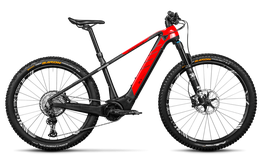 Rotwild E-Mountainbike - Big Mountain R.X750      PRO HT (2020)