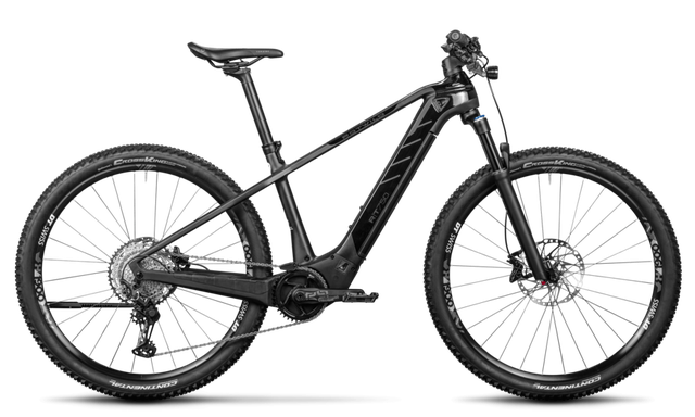 Rotwild E-Mountainbike - Cross Over R.T750 - CORE (2020)