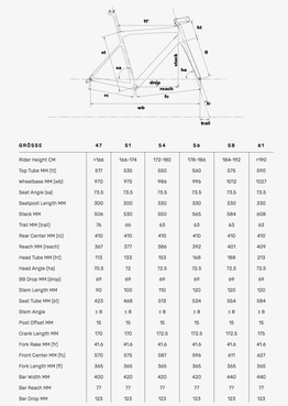 Geometrie BMC Teammachine SLR02 DISC 2020, Beispielbilder, ggf. teilweise mit Sonderausstattung