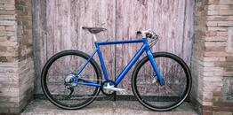 Desiknio 11speed Electric Bike      Classic