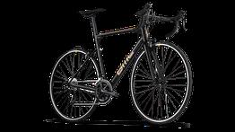 BMC Teammachine ALR ONE - Alu-Rennrad ohne Scheibenbremsen - Modelljahr 2021, Beispielbilder, ggf. teilweise mit Sonderausstattung