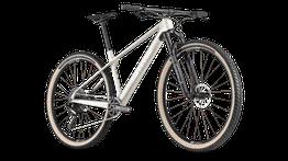 BMC Twostroke - Mountainbike Hardtail 2021, Beispielbilder, ggf. teilweise mit Sonderausstattung