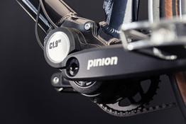 Detailaufnahmen Pinion Getriebe (hier die 9-Gang), Beispielbilder, ggf. teilweise mit Sonderausstattung