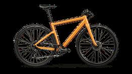 BMC Lifestyle-Serie Alpenchallenge 01      TREE mit Shimano GRX (2021)