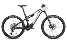 Rotwild E-Mountainbike - Cross Mountain R.C750      PRO (2021) Größe L