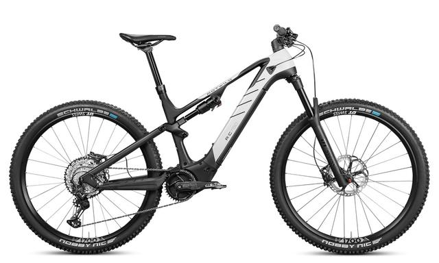 Rotwild E-Mountainbike - Cross Mountain R.C750 - PRO (2021)