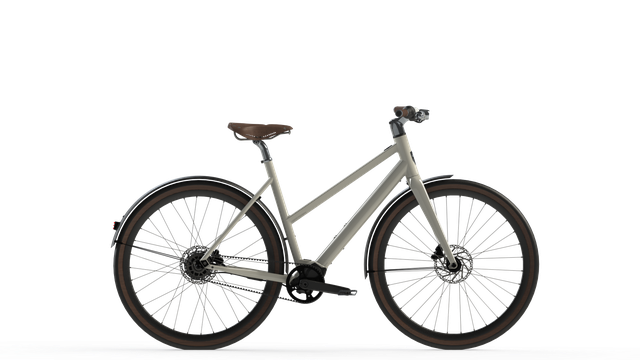 Desiknio Pinion Electric Bike - CLASSIC COMFORT