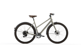 Desiknio 11Speed Electric Bike      11S Classic Comfort