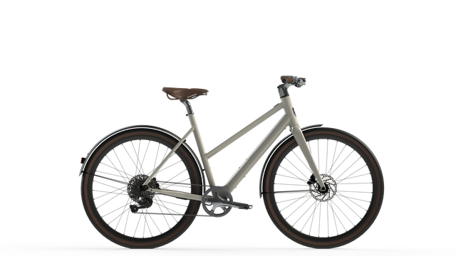 Desiknio 11Speed Electric Bike - 11S Classic Comfort