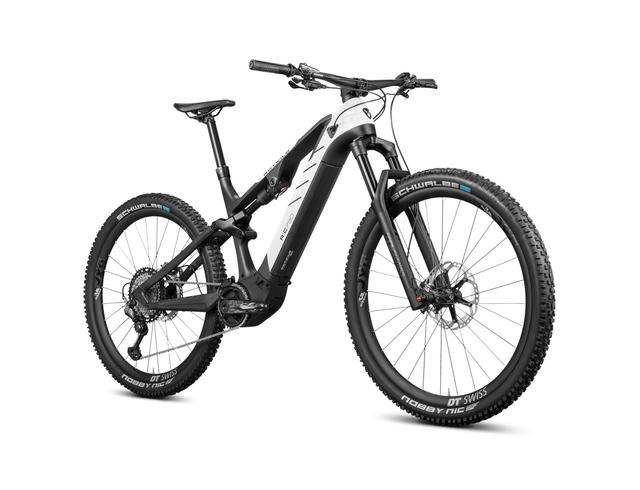 Rotwild E-Mountainbike - Cross Mountain R.C750 - ULTRA (2020)
