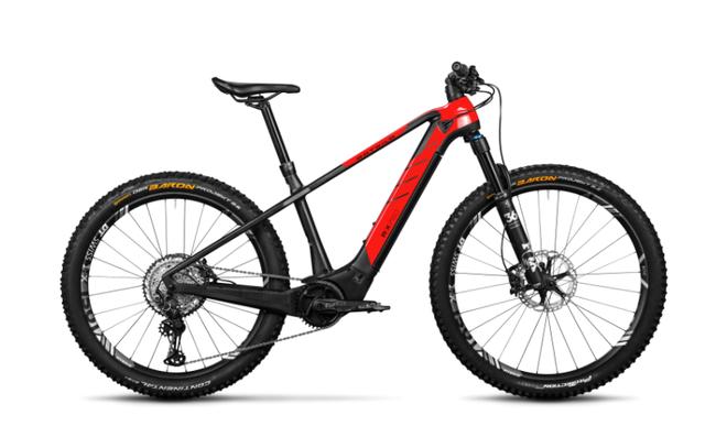 Rotwild E-Mountainbike - Big Mountain R.X750 - PRO HT (2021) #Leider ausverkauft!