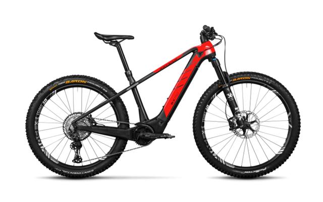 Rotwild E-Mountainbike - Big Mountain R.X750 - ULTRA (2021) #Leider ausverkauft!