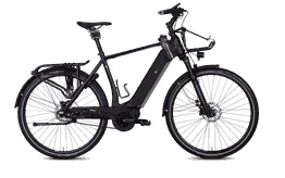 E.Bikemanufaktur 17-ZEHN      E-Bike 17 Testrad, sofort lieferbar - Größe 55