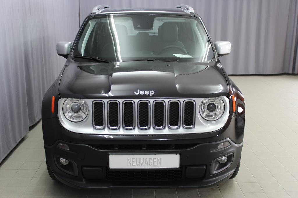 Jeep Renegade, 876-5CE CARBON BLACK402-211 Leder schwarz/schwarz,