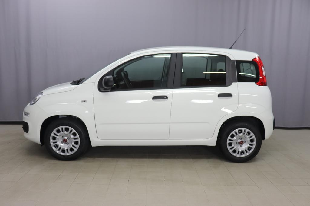 Panda MY21  Hybrid 1.0 GSE 51kw (70PS) E6D296 - Gelato Weiss123 - Stoff Schwarz/Grau